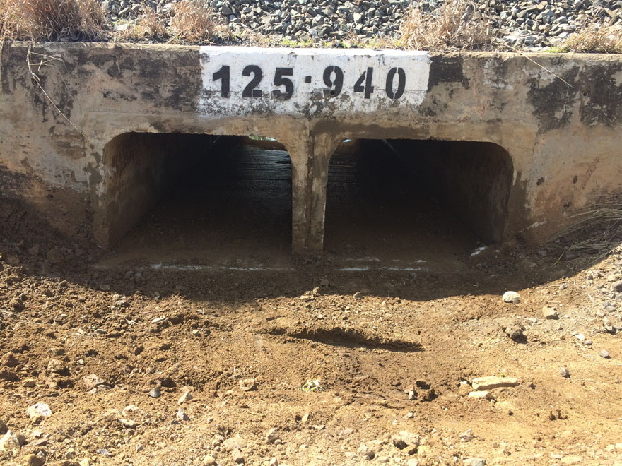 Commercial pipe Inspection